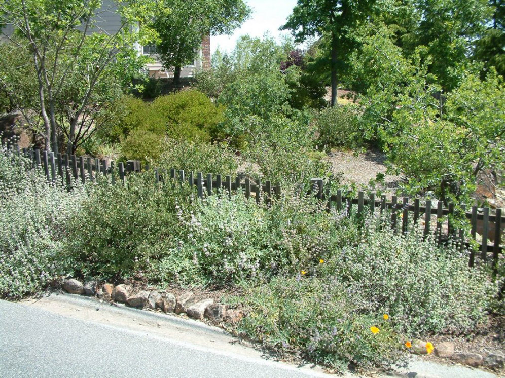 Simple Fencing for the Garden